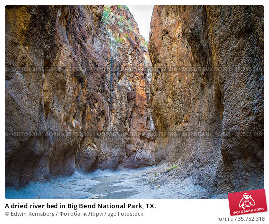 A dried river bed in Big Bend National Park, TX. Стоковое фото, фотограф Edwin Remsberg / age Fotostock / Фотобанк Лори