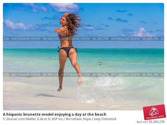 A hispanic brunette model enjoying a day at the beach. Стоковое фото, фотограф Zoonar.com/Walter G Arce Sr ASP Inc / easy Fotostock / Фотобанк Лори