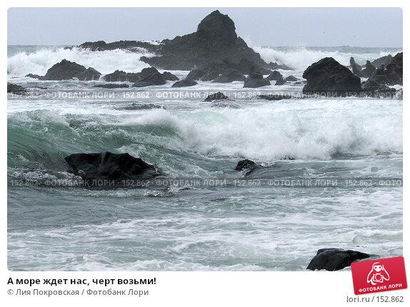А море ждет нас, черт возьми!, фото № 152862, снято 8 августа 2007 г. (c) Лия Покровская / Фотобанк Лори