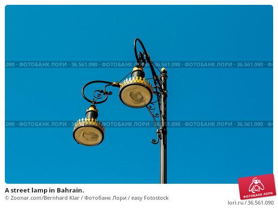 A street lamp in Bahrain. Стоковое фото, фотограф Zoonar.com/Bernhard Klar / easy Fotostock / Фотобанк Лори