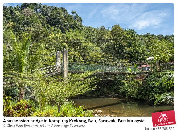 A suspension bridge in Kampung Krokong, Bau, Sarawak, East Malaysia. Стоковое фото, фотограф Chua Wee Boo / age Fotostock / Фотобанк Лори
