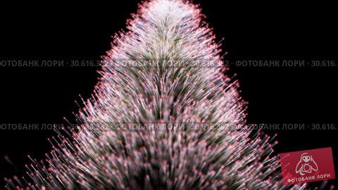 Купить «Abstract background of particles shallow depth of field», видеоролик № 30616382, снято 6 ноября 2016 г. (c) Uladzimir Sitkouski / Фотобанк Лори