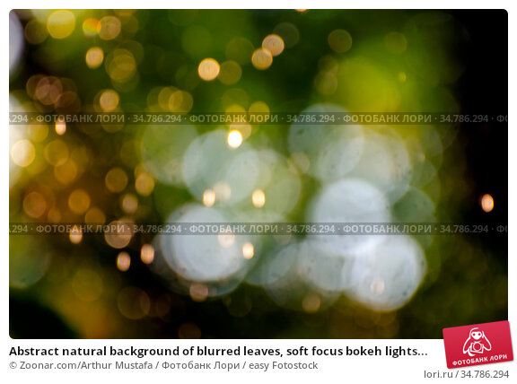 Abstract natural background of blurred leaves, soft focus bokeh lights... Стоковое фото, фотограф Zoonar.com/Arthur Mustafa / easy Fotostock / Фотобанк Лори