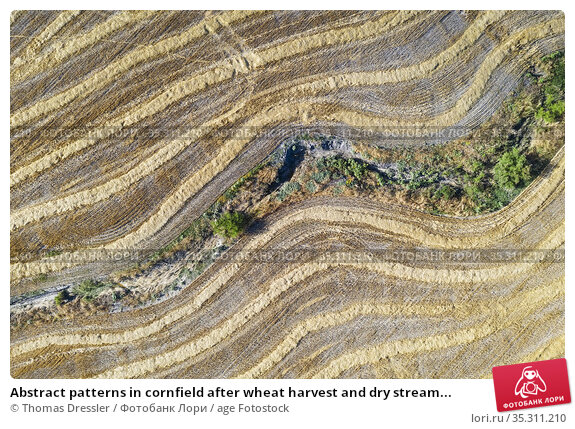 Abstract patterns in cornfield after wheat harvest and dry stream... Стоковое фото, фотограф Thomas Dressler / age Fotostock / Фотобанк Лори