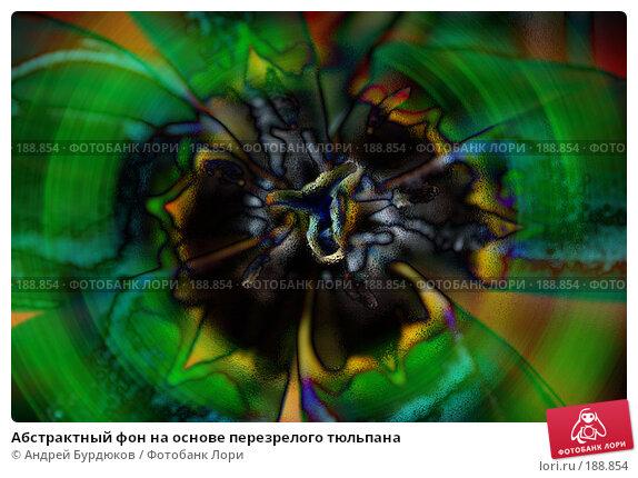 Абстрактный фон на основе перезрелого тюльпана, фото № 188854, снято 20 января 2017 г. (c) Андрей Бурдюков / Фотобанк Лори