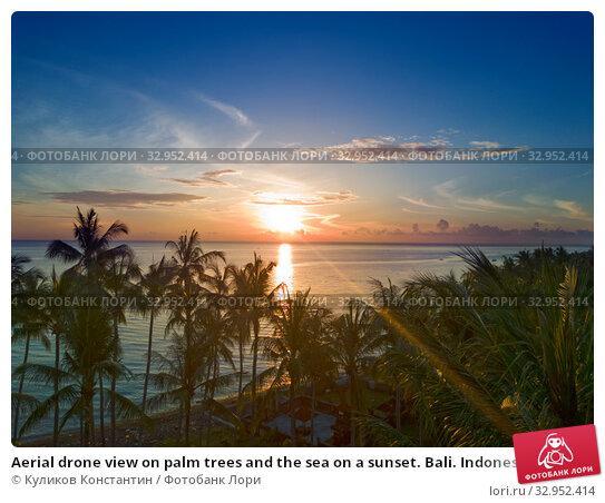 Aerial drone view on palm trees and the sea on a sunset. Bali. Indonesia. Стоковое фото, фотограф Куликов Константин / Фотобанк Лори