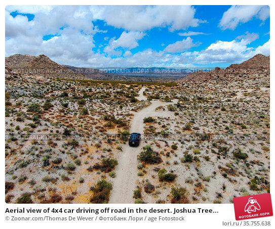 Aerial view of 4x4 car driving off road in the desert. Joshua Tree... Стоковое фото, фотограф Zoonar.com/Thomas De Wever / age Fotostock / Фотобанк Лори