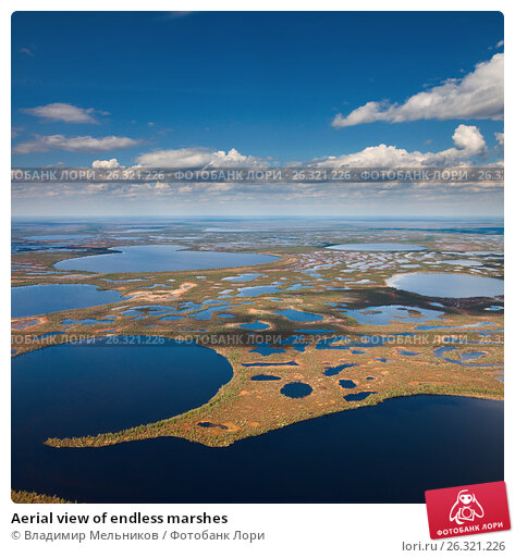 Aerial view of endless marshes, фото № 26321226, снято 25 мая 2016 г. (c) Владимир Мельников / Фотобанк Лори