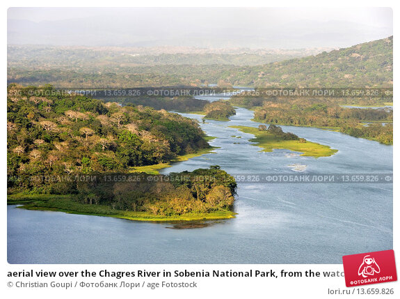 Купить «aerial view over the Chagres River in Sobenia National Park, from the watching tower of the Gamboa Resort, Republic of Panama, Central America», фото № 13659826, снято 19 марта 2019 г. (c) age Fotostock / Фотобанк Лори