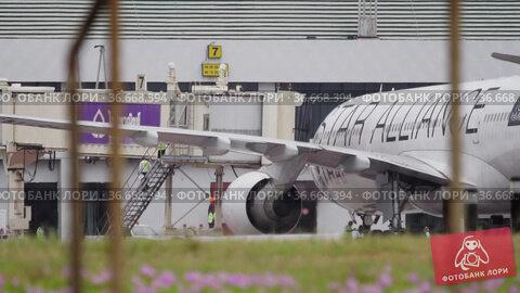 Aircraft maintenance before departure (2016 год). Редакционное видео, видеограф Игорь Жоров / Фотобанк Лори