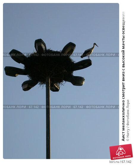 Аист меланхолично смотрит вниз с высокой мачты освещения, фото № 67142, снято 27 апреля 2005 г. (c) Harry / Фотобанк Лори