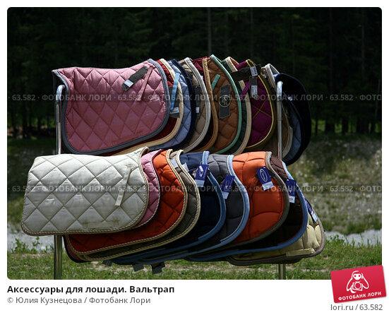 Купить «Аксессуары для лошади. Вальтрап», фото № 63582, снято 10 июня 2007 г. (c) Юлия Кузнецова / Фотобанк Лори