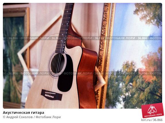 Акустическая гитара, фото № 36866, снято 21 июля 2017 г. (c) Андрей Соколов / Фотобанк Лори