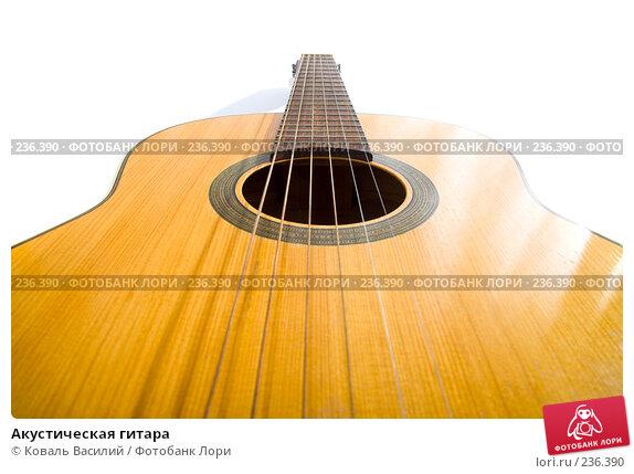 Купить «Акустическая гитара», фото № 236390, снято 18 декабря 2017 г. (c) Коваль Василий / Фотобанк Лори