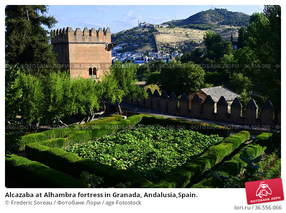 Alcazaba at Alhambra fortress in Granada, Andalusia,Spain. Стоковое фото, фотограф Frederic Soreau / age Fotostock / Фотобанк Лори