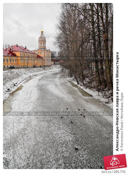 Купить «Александро-Невская лавра и речка Монастырка», фото № 205710, снято 8 февраля 2008 г. (c) Parmenov Pavel / Фотобанк Лори