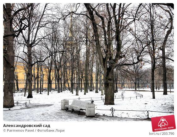 Купить «Александровский сад», фото № 203790, снято 6 февраля 2008 г. (c) Parmenov Pavel / Фотобанк Лори