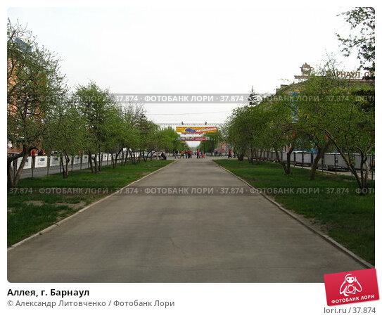 Аллея, г. Барнаул, фото № 37874, снято 24 марта 2017 г. (c) Александр Литовченко / Фотобанк Лори