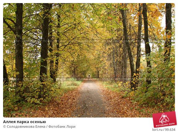 Аллея парка осенью, фото № 99634, снято 1 октября 2006 г. (c) Солодовникова Елена / Фотобанк Лори
