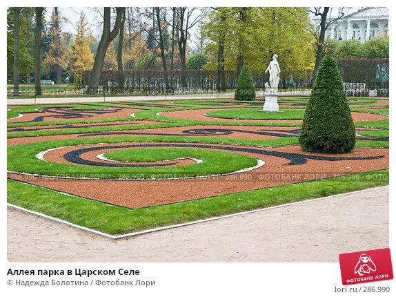 Аллея парка в Царском Селе, фото № 286990, снято 22 октября 2007 г. (c) Надежда Болотина / Фотобанк Лори