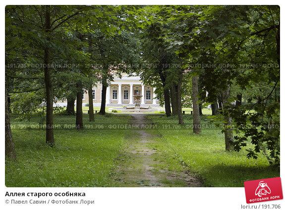 Аллея старого особняка, фото № 191706, снято 15 июля 2007 г. (c) Павел Савин / Фотобанк Лори