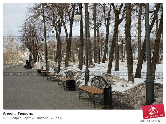 Купить «Аллея,  Тюмень», фото № 233010, снято 25 марта 2008 г. (c) Снигирев Сергей / Фотобанк Лори