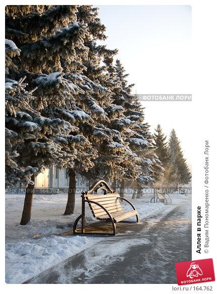 Аллея в парке, фото № 164762, снято 1 декабря 2007 г. (c) Вадим Пономаренко / Фотобанк Лори