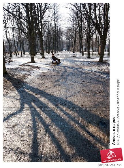 Аллея, в парке, фото № 241738, снято 31 марта 2008 г. (c) Андрюхина Анастасия / Фотобанк Лори
