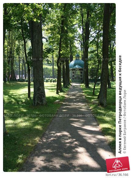 Аллея в парке Петродворца ведущая к беседке, фото № 36166, снято 8 августа 2006 г. (c) Евгений Батраков / Фотобанк Лори
