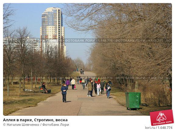 парк строгино фотосессия дизайн-проекты могут быть