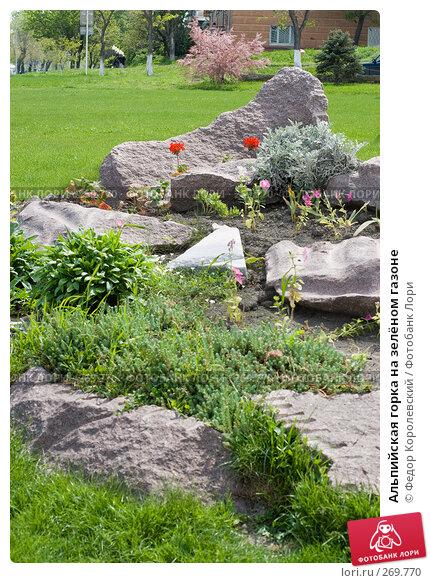 Альпийская горка на зелёном газоне, фото № 269770, снято 1 мая 2008 г. (c) Федор Королевский / Фотобанк Лори