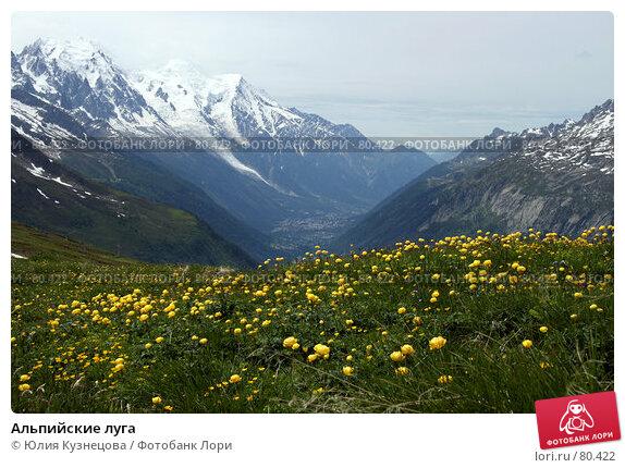 Альпийские луга, фото № 80422, снято 17 июня 2007 г. (c) Юлия Кузнецова / Фотобанк Лори