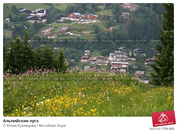 Альпийские луга, фото № 104466, снято 26 июля 2017 г. (c) Юлия Кузнецова / Фотобанк Лори