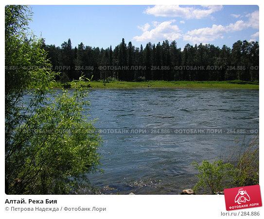 Алтай. Река Бия, фото № 284886, снято 22 июня 2006 г. (c) Петрова Надежда / Фотобанк Лори
