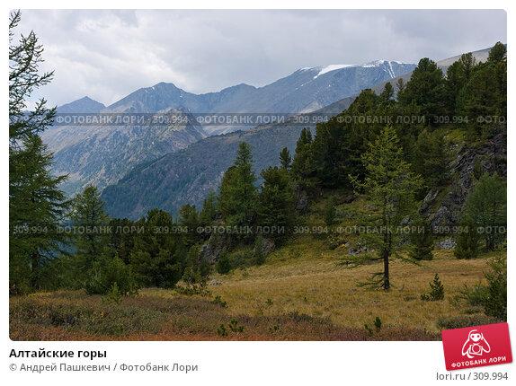 Алтайские горы, фото № 309994, снято 24 мая 2017 г. (c) Андрей Пашкевич / Фотобанк Лори