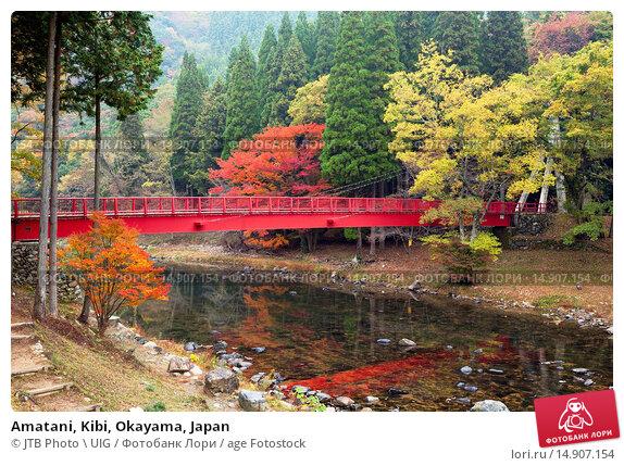 Купить «Amatani, Kibi, Okayama, Japan», фото № 14907154, снято 19 февраля 2019 г. (c) age Fotostock / Фотобанк Лори