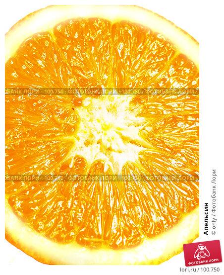 Апельсин, фото № 100750, снято 21 февраля 2007 г. (c) only / Фотобанк Лори