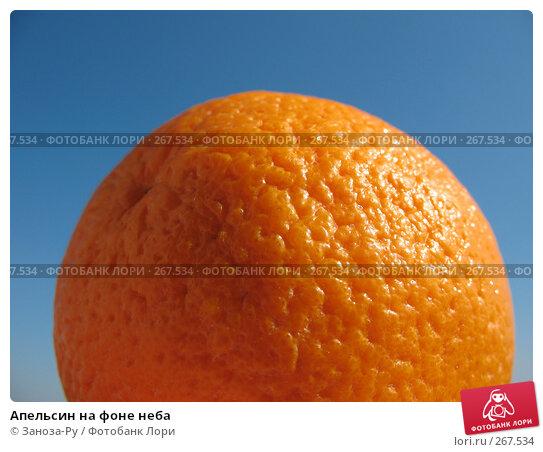 Купить «Апельсин на фоне неба», фото № 267534, снято 26 апреля 2008 г. (c) Заноза-Ру / Фотобанк Лори