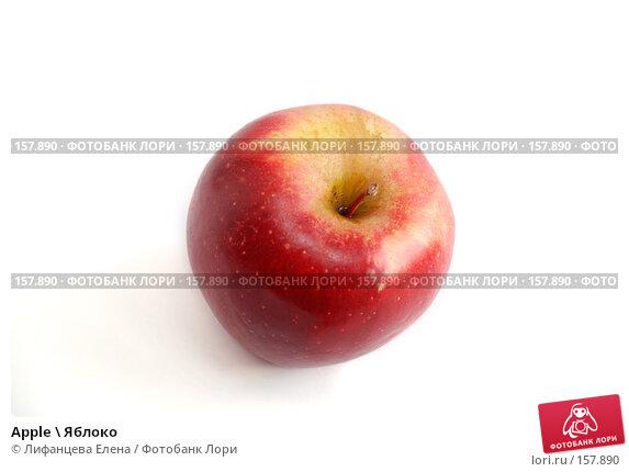 Apple \ Яблоко, фото № 157890, снято 20 декабря 2007 г. (c) Лифанцева Елена / Фотобанк Лори