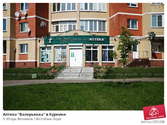 """Купить «Аптека """"Валерьянка"""" в Куркине», эксклюзивное фото № 273238, снято 4 мая 2008 г. (c) Игорь Веснинов / Фотобанк Лори"""