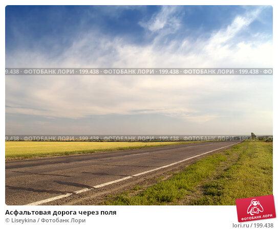 Асфальтовая дорога через поля, фото № 199438, снято 25 июля 2006 г. (c) Liseykina / Фотобанк Лори