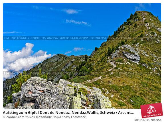 Aufstieg zum Gipfel Dent de Nendaz, Nendaz,Wallis, Schweiz / Ascent... Стоковое фото, фотограф Zoonar.com/mike / easy Fotostock / Фотобанк Лори