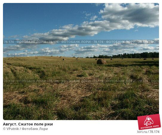 Август. Сжатое поле ржи, фото № 78174, снято 18 августа 2005 г. (c) VPutnik / Фотобанк Лори