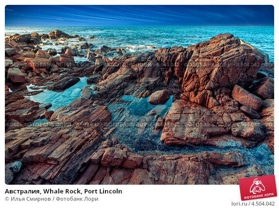 Австралия, Whale Rock, Port Lincoln (2011 год). Стоковое фото, фотограф Илья Смирнов / Фотобанк Лори