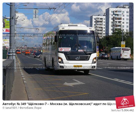 сети фото автобусов щелково элджей знаменит меньше