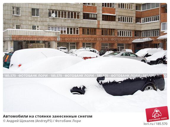 Автомобили на стоянке занесенные снегом, фото № 185570, снято 25 января 2008 г. (c) Андрей Щекалев (AndreyPS) / Фотобанк Лори