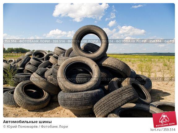 Купить «Автомобильные шины», фото № 359514, снято 15 июля 2008 г. (c) Юрий Пономарёв / Фотобанк Лори
