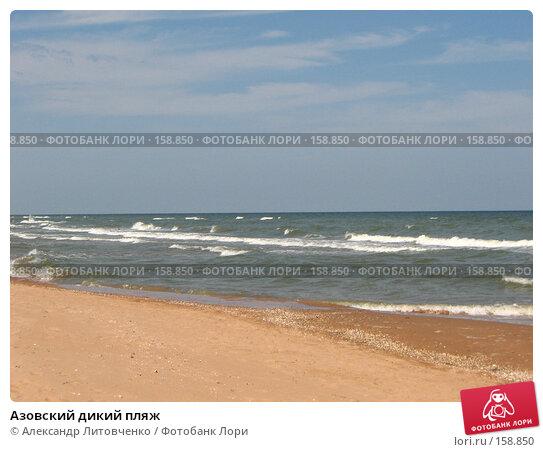 Азовский дикий пляж, фото № 158850, снято 12 сентября 2007 г. (c) Александр Литовченко / Фотобанк Лори