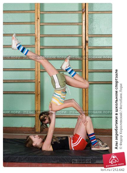 Азы акробатики в школьном спортзале, фото № 212642, снято 10 февраля 2008 г. (c) Федор Королевский / Фотобанк Лори