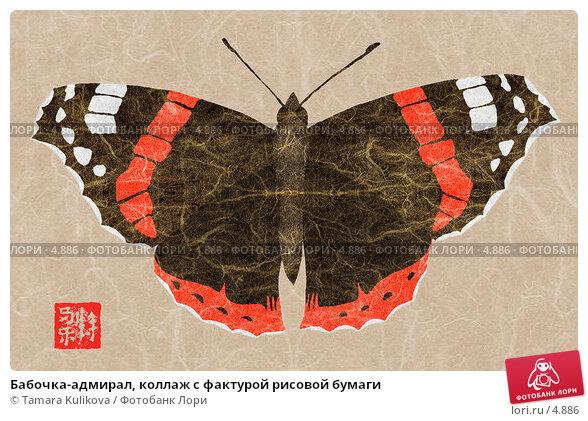 Бабочка-адмирал, коллаж с фактурой рисовой бумаги, иллюстрация № 4886 (c) Tamara Kulikova / Фотобанк Лори